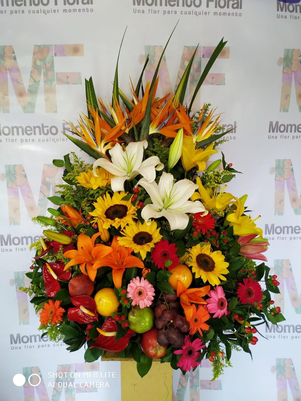 Inicio Momento Floral Floristería En Medellín Entregas